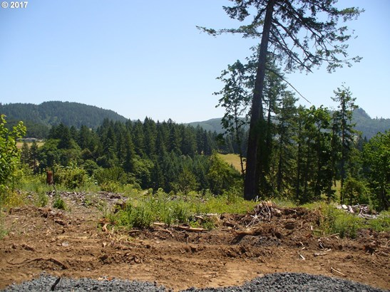 Wallace Creek Rd 1, Pleasant Hill, OR - USA (photo 3)