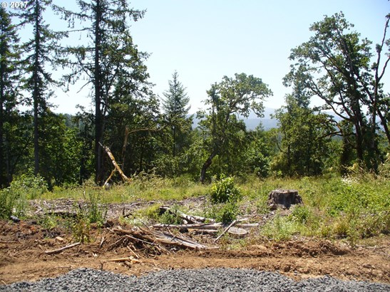 Wallace Creek Rd 1, Pleasant Hill, OR - USA (photo 4)