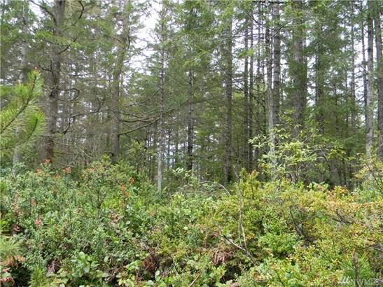 0 Timber Tides Dr, Union, WA - USA (photo 3)