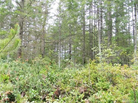 0 Timber Tides Dr, Union, WA - USA (photo 4)