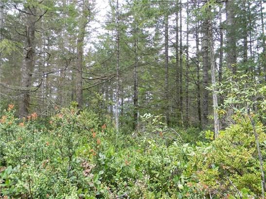 0 Timber Tides Dr, Union, WA - USA (photo 5)