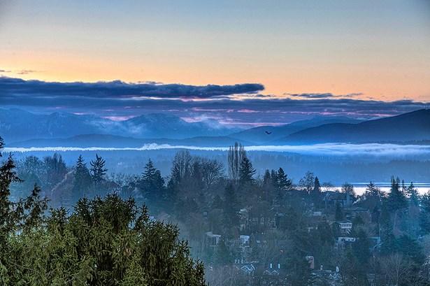 Views at dawn (photo 5)