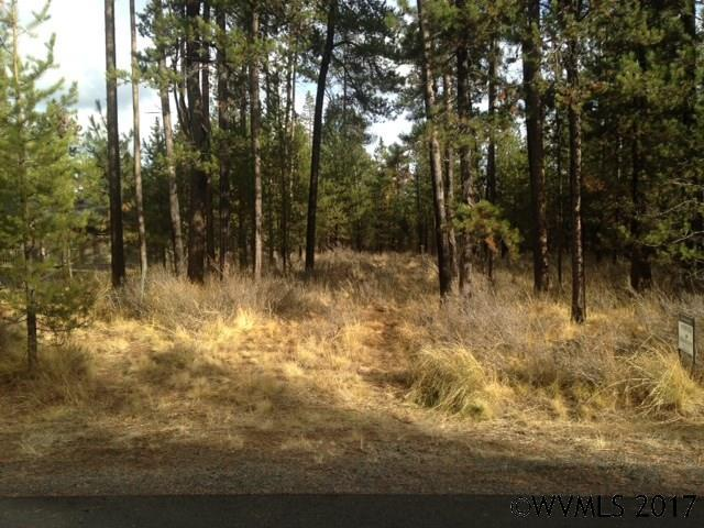 56260 Sandpiper Rd, Bend, OR - USA (photo 2)