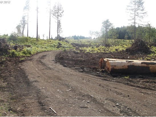 0 Fort Hill Rd, Willamina, OR - USA (photo 1)