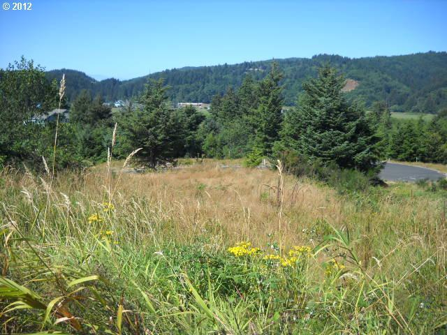 7300 Valley View Dr, Pacific City, OR - USA (photo 1)