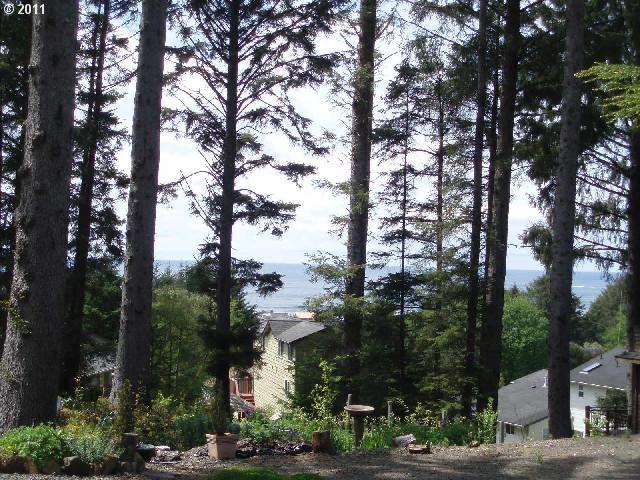 E Chinook, Cannon Beach, OR - USA (photo 2)
