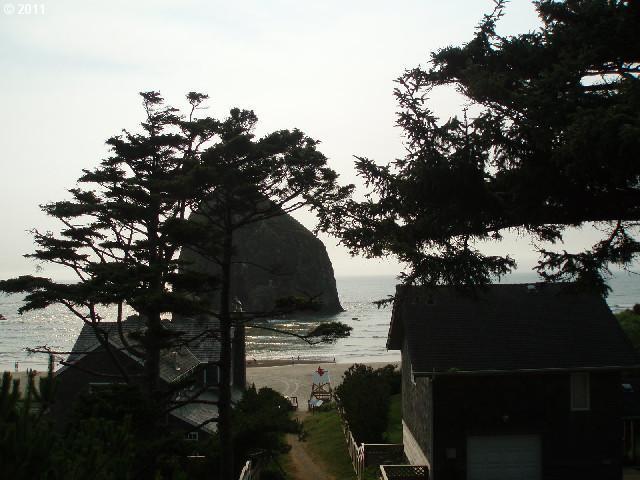 E Chinook, Cannon Beach, OR - USA (photo 5)