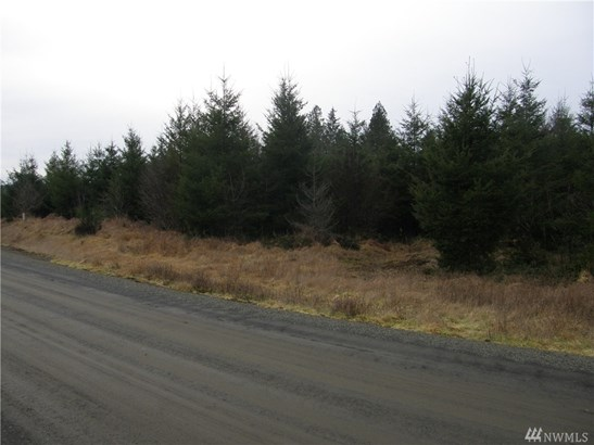 15 Arrowhead Lane, Elma, WA - USA (photo 1)