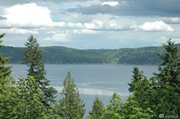 999 Forest Dr, Brinnon, WA - USA (photo 1)