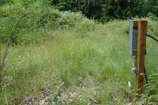999 Forest Dr, Brinnon, WA - USA (photo 3)