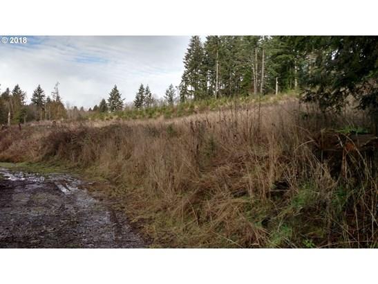Pellham Hill Rd, Rainier, OR - USA (photo 1)