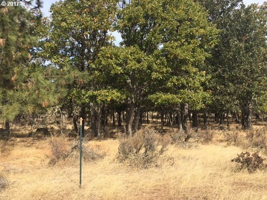 475 Orchard Heights, Goldendale, WA - USA (photo 4)