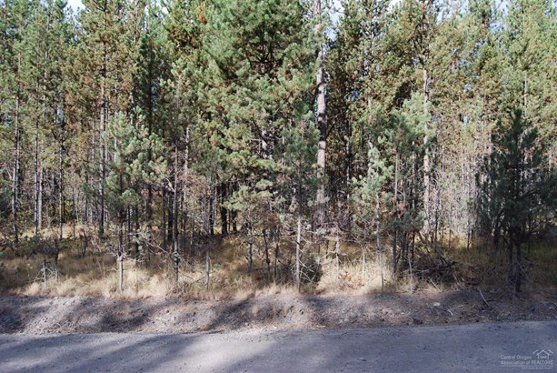 9500 Lot Eclipse Drive, Bend, OR - USA (photo 2)