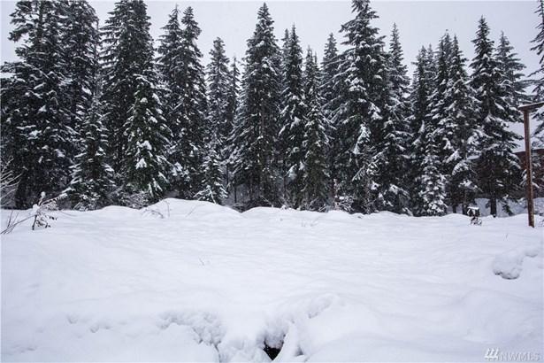 102 Guye Peak Lane, Snoqualmie Pass, WA - USA (photo 1)