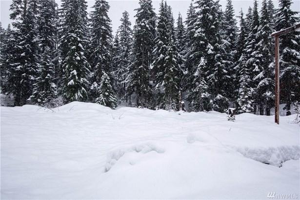 102 Guye Peak Lane, Snoqualmie Pass, WA - USA (photo 3)
