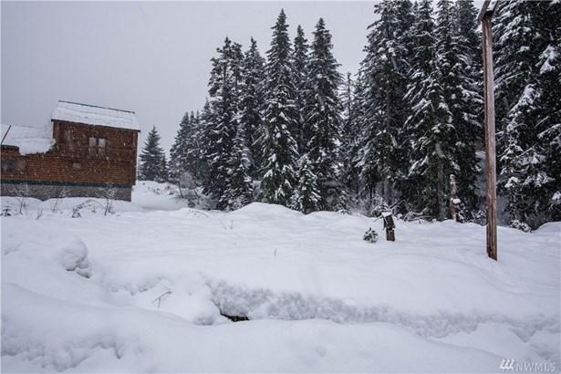 102 Guye Peak Lane, Snoqualmie Pass, WA - USA (photo 4)