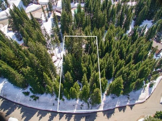 0 Ober Strasse, Snoqualmie Pass, WA - USA (photo 1)