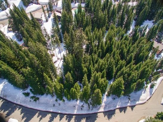0 Ober Strasse, Snoqualmie Pass, WA - USA (photo 2)