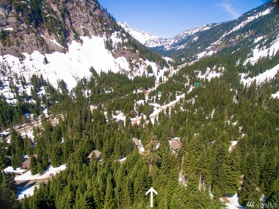0 Ober Strasse, Snoqualmie Pass, WA - USA (photo 3)