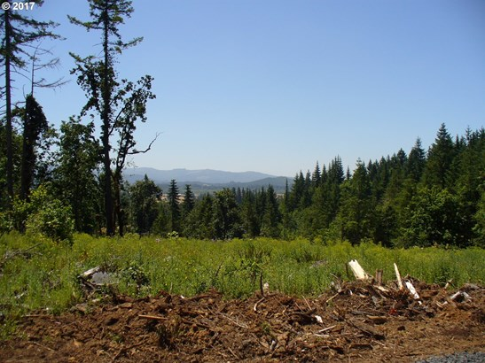 Wallace Creek Rd 3, Pleasant Hill, OR - USA (photo 3)