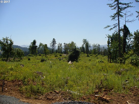 Wallace Creek Rd 3, Pleasant Hill, OR - USA (photo 4)