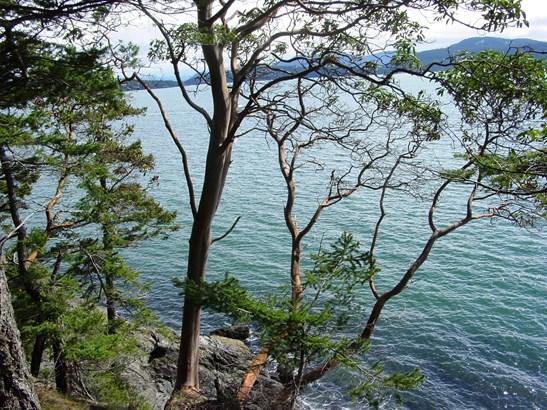 O rebe road, orcas island (photo 5)