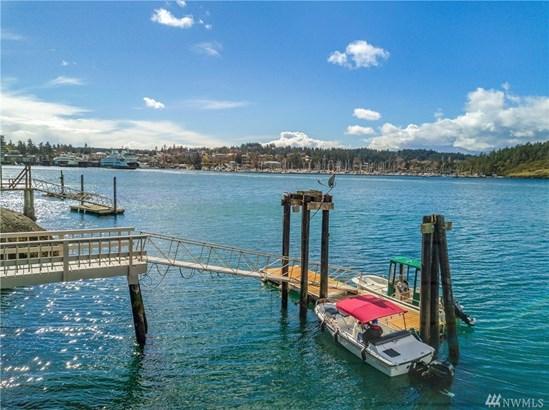 43 Brown Island, Friday Harbor, WA - USA (photo 3)