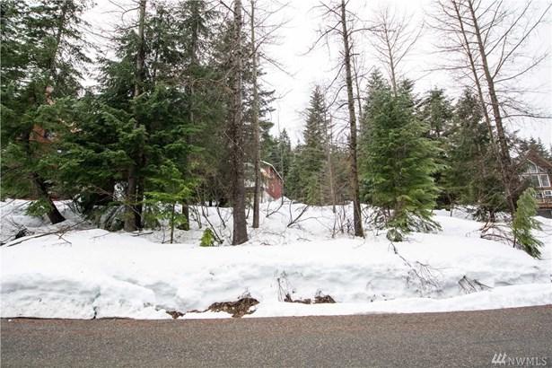 1 Chamonix Place, Snoqualmie Pass, WA - USA (photo 3)