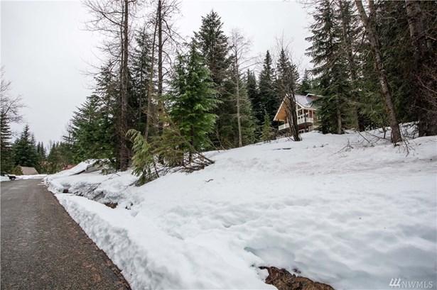 1 Chamonix Place, Snoqualmie Pass, WA - USA (photo 5)