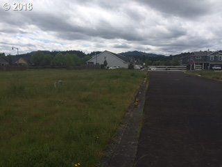0 Partition Plat Lot 2, Forest Grove, OR - USA (photo 2)