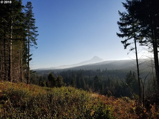 Berry Dr, Mt Hood-parkdale, OR - USA (photo 1)