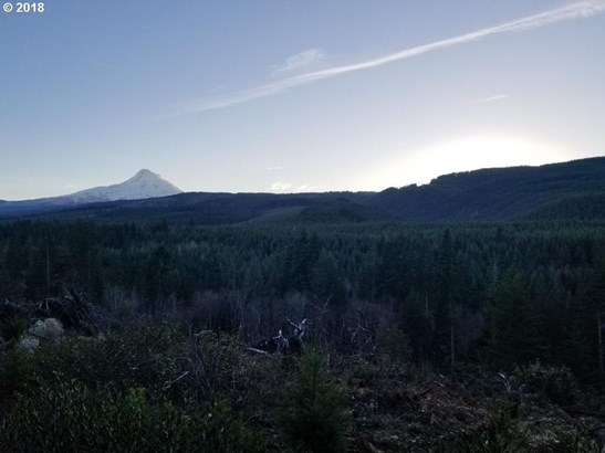 Berry Dr, Mt Hood-parkdale, OR - USA (photo 3)