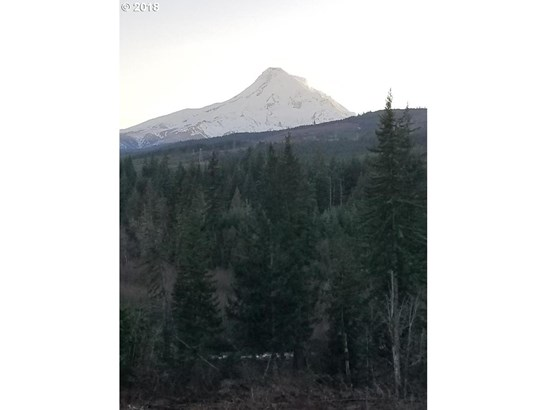 Berry Dr, Mt Hood-parkdale, OR - USA (photo 5)