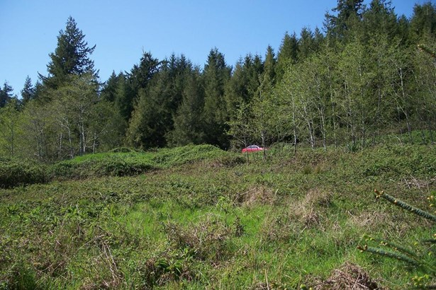 3436 N Bayview Road, Waldport, OR - USA (photo 3)