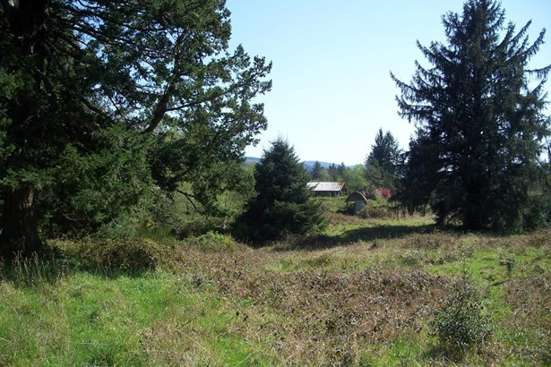 3436 N Bayview Road, Waldport, OR - USA (photo 4)