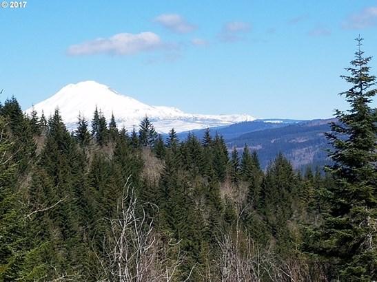 Blackberry Ln, White Salmon, WA - USA (photo 1)