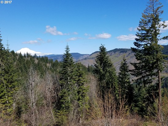 Blackberry Ln, White Salmon, WA - USA (photo 2)