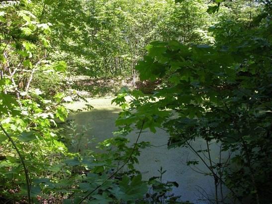 Blackberry Ln, White Salmon, WA - USA (photo 5)