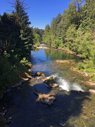 Rose St, Blue River, OR - USA (photo 5)