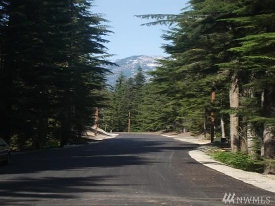 2 Tanner Wy Lot48, Snoqualmie Pass, WA - USA (photo 4)