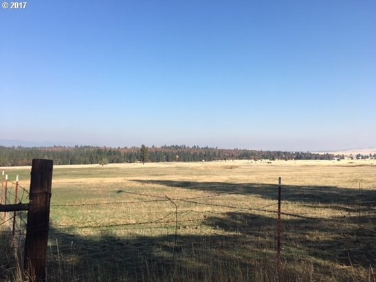 52271 Kelly Springs Rd, Maupin, OR - USA (photo 3)