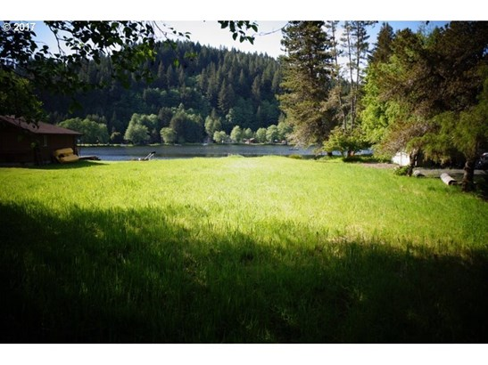 9733 Beach Dr, Birkenfeld, OR - USA (photo 1)