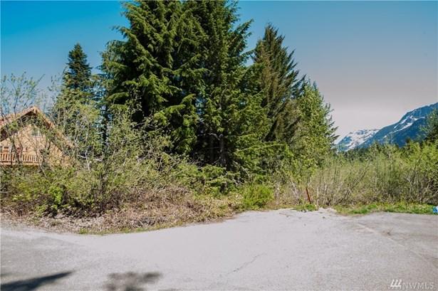 41 Romans Ct, Snoqualmie Pass, WA - USA (photo 4)