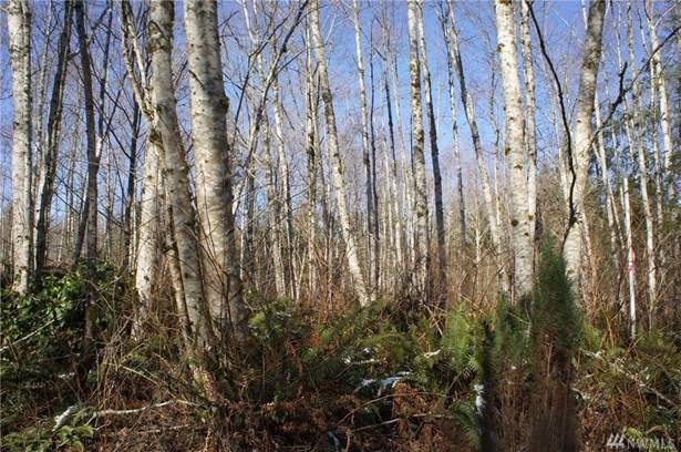0 Blacktail Ct, Quilcene, WA - USA (photo 2)