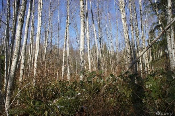 0 Blacktail Ct, Quilcene, WA - USA (photo 4)