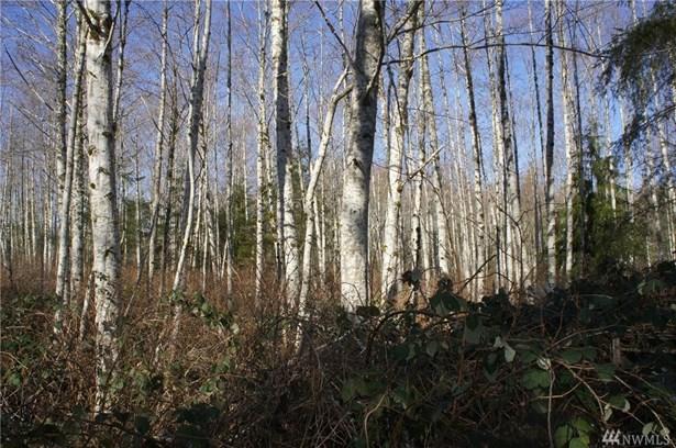0 Blacktail Ct, Quilcene, WA - USA (photo 5)