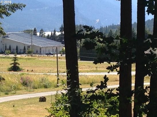 1310 Stag Ln, White Salmon, WA - USA (photo 4)