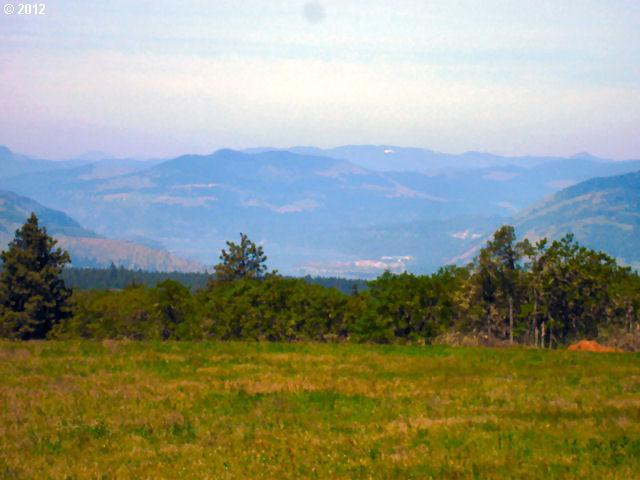 Seven Mile Hill Rd, Mosier, OR - USA (photo 3)