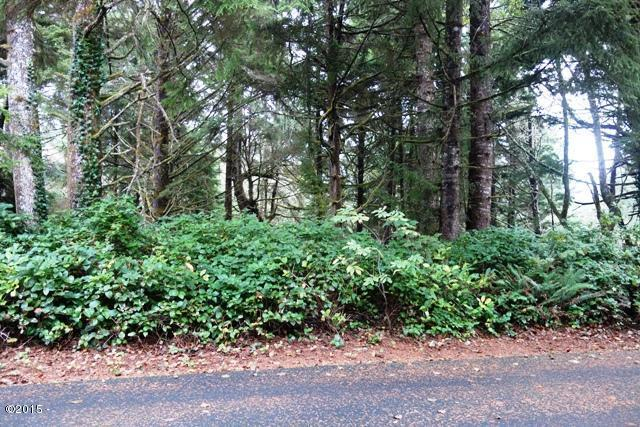 Lot 135 Midden Reach, Depoe Bay, OR - USA (photo 1)