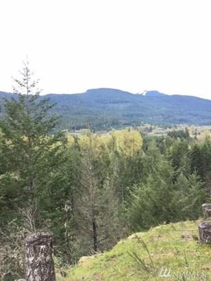 0 Alpine Dr, White Pass, WA - USA (photo 1)